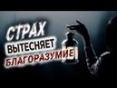 140 Страх вытесняет благоразумие - Алексей Осокин - Библия 365 2 сезон