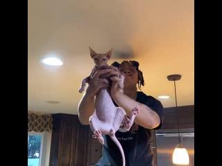 Trippie Redd играет в Короля льва со своим котом