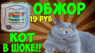 Обжор: Тушёнка за 19 РУБЛЕЙ! + Даю коту
