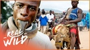 The Mysterious Animal Gangs Of Nigeria Hyena Men Real Wild
