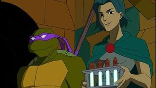Черепашки Ниндзя 2 сезон 13 серия / Teenage Mutant Ninja Turtles (2003) Flarrow Films (Русская озвучка)