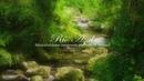 Música Relajante para Aliviar El Estres Música de Piano Música para Dormir y Relajarse ☼10