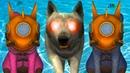 Симулятор Белки 2 Онлайн 8 Подводник. Подводная белочка победила Босса Волка Короля на пурумчата