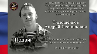 Подвиг Андрея Тимошенкова. Сирия.