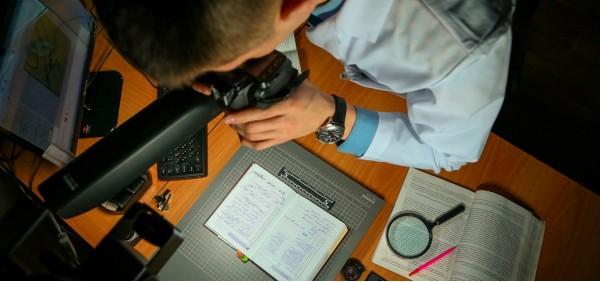 Экспертиза технического исследования документов в Губкинске
