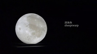 "sheeptwarp - ""深海魚"" Music Video"