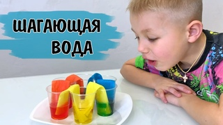 Как смешивать цвета? Изучение цветового круга. Опыт для детей Шагающая вода