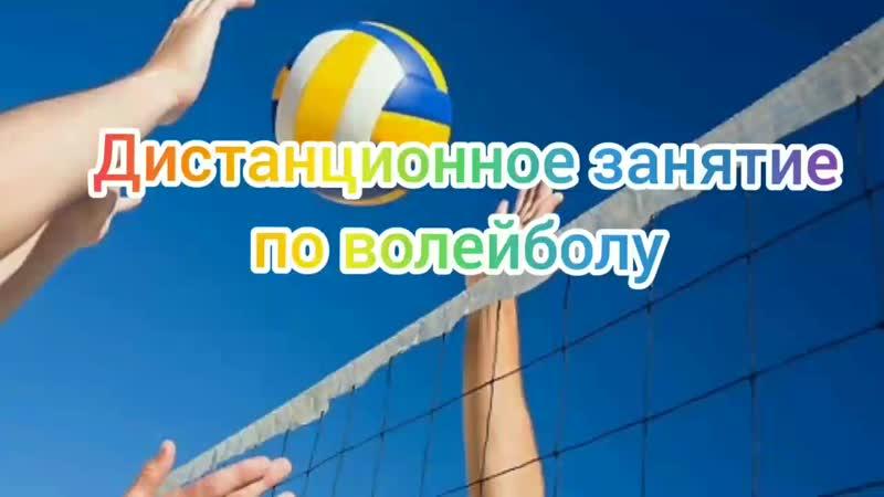 Дистанционное занятие по волейболу Подготовила Бойко Анастасия студентка СевГУ группы РиСОТ б 19 1о