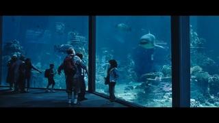 Акула защищает Артура | Аквамен 2019 | Момент из фильма