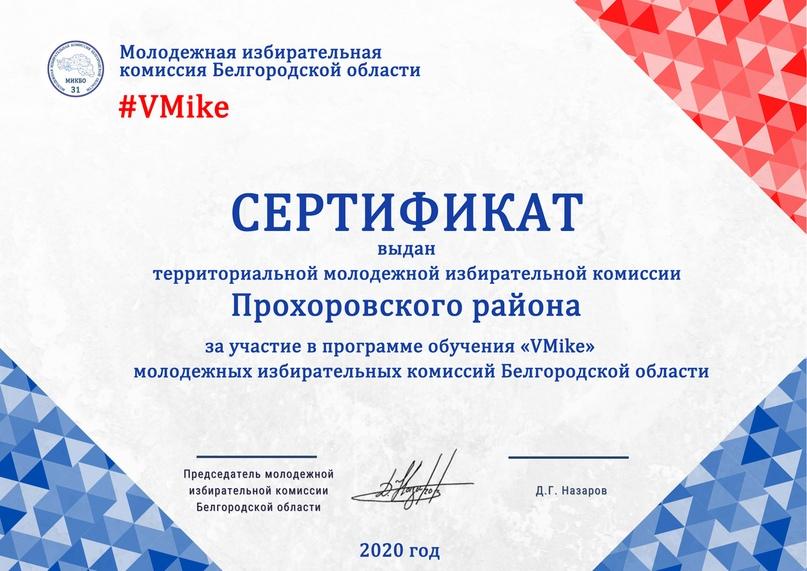 Итоги программы обучения молодежных избирательных комиссий Белгородской области «VMike», изображение №23
