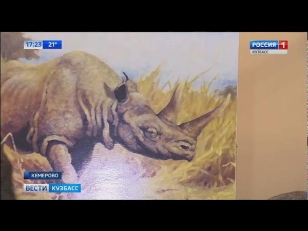 В Кузбассе нашли кости шерстистого носорога и пещерного медведя