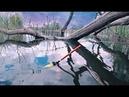ЗАКИНУЛ ПОД КОРЯЖКУ И ТУТ ВЕСЬ КАРАСЬ. Рыбалка на поплавочную удочку.