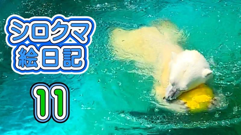 天王寺動物園 今回はのんびりとプールで遊ぶイッちゃんです。イッちゃんファンの方にはこういう動画が一番ですね… ^o^