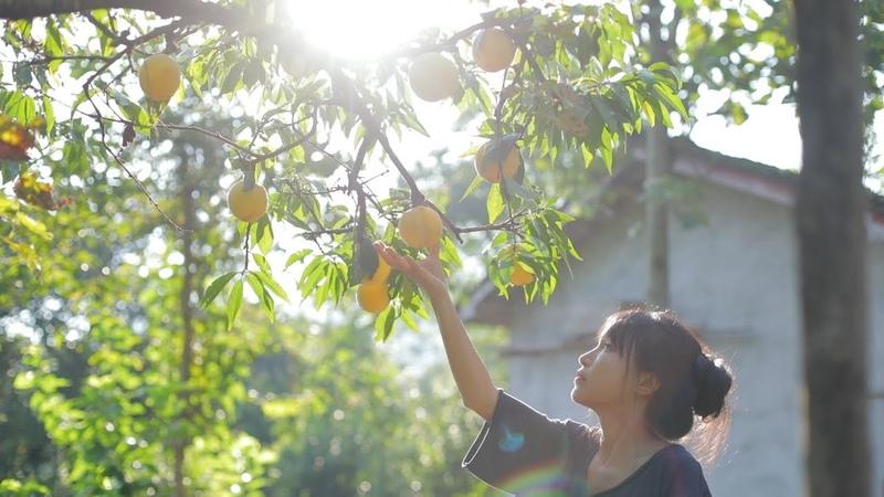 挂一盏观花月影灯,正配这一整桌的黄桃小食 Peach Dishes Liziqi Channel
