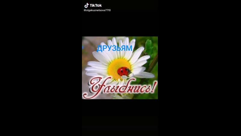 Video-5861fb9328dfd82fdfb7332836430d4b-V.mp4