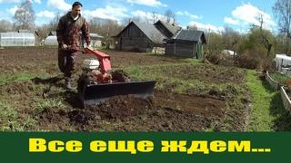"""Запрягаю  """"железного коня"""" или мотоблок мтз Беларус - готовность номер один!"""