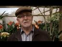 Gardening Australia ABC 2017 07 01