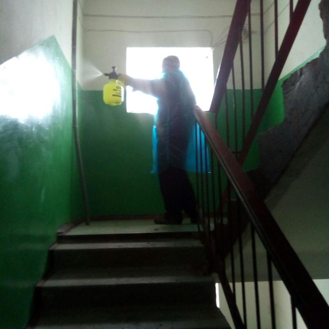 В Петровске возобновлены работы по дезинфекции подъездов многоквартирных домов