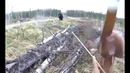 неудачный день, охота на медведя с луком. bad day.FUNNY MOMENTS/ПРИКОЛЫ