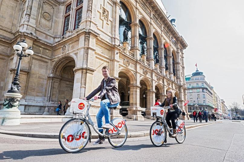 Поездка в Вену: советы от опытных путешественников, изображение №2