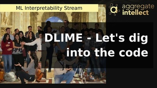 DLIME - Let's dig into the code (model explainability stream)