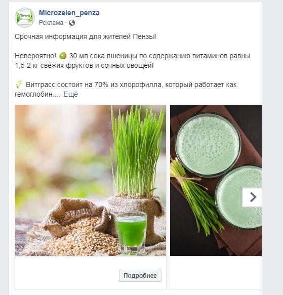 Кейс: Продвижение микрозелени в Instagram, изображение №3
