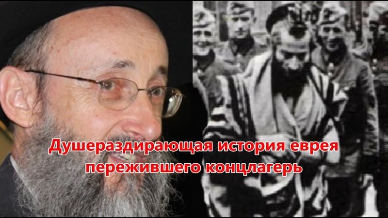 Душераздирающая история еврея пережившего концлагерь Рав Ашер Кушнир