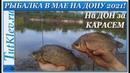 Рыбалка в мае на Дону 2021. Половили карася и густеру на фидер.
