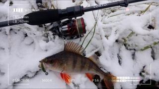 Выскочил на рыбалку в первый раз с Graphiteleader Corto GCRTS 742L T