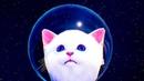 СИМУЛЯТОР Маленького КОТЕНКА 4 Кид в космосе на ЛУНЕ с лунным котом Play With Gilber на ПУРУМЧАТА