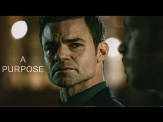 Elijah Mikaelson || A Purpose|| The Nobel Vampire || A Brother