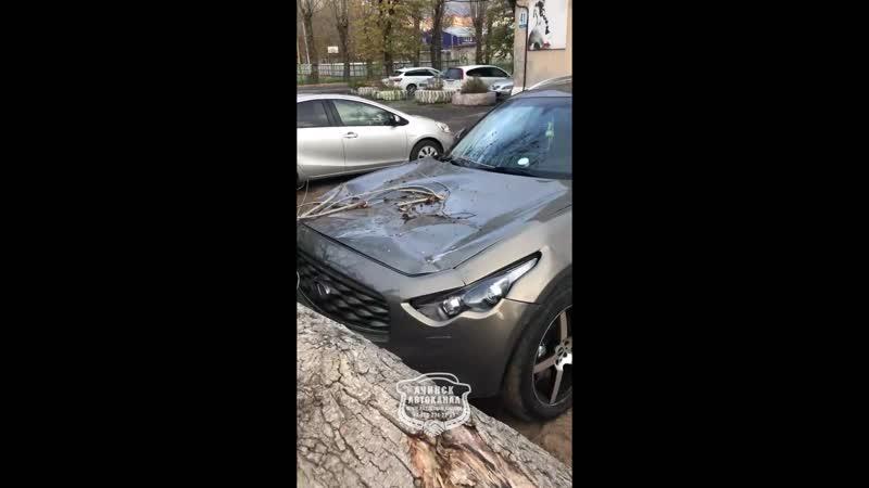 Дерево упало на машину на 2-ом микрорайоне