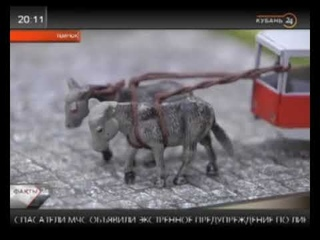 музей Планета осликов