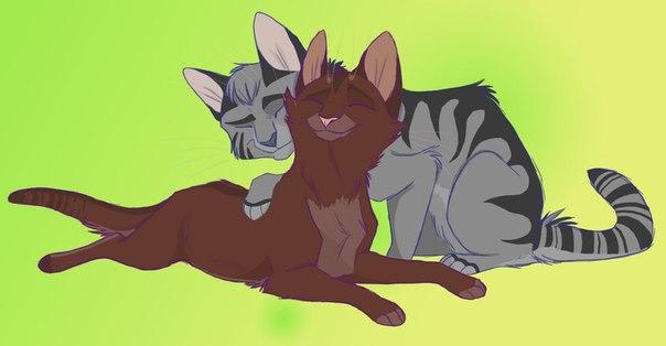 коты воители голубка и шмель картинки его плечами