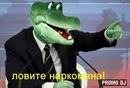 Фотоальбом Зорикто Лосова