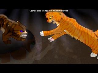Львиносвет и Верескоглазка под музыку Мария Красивая пара Picrolla