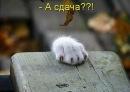 Персональный фотоальбом Кристины Ивановой