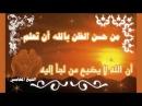 ضاقت علي الارض بسبب تاخر الزواج الشيخ محمد15