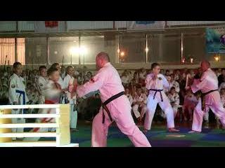 13 Festival of Martial Arts 2017 - Seibukan Karate, Jinbukan Kobudo & Shudokan Aikido RUSSIA