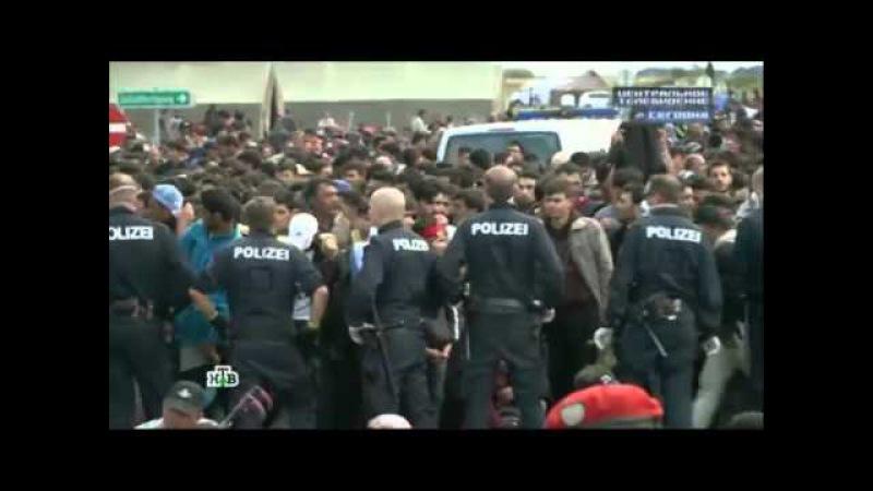 Будапешт пригрозил отказать Хорватии вприсоединении кШенгену из-за беженцев