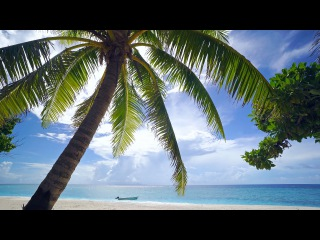 The Perfect 4K Beach Scene: Fiji 1 Hour Glistening Island Beach plus Nature Sounds UHD
