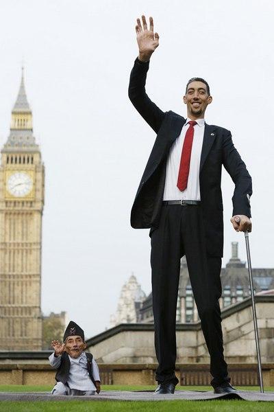 Самый высокий человек в турции фото хуй стоял