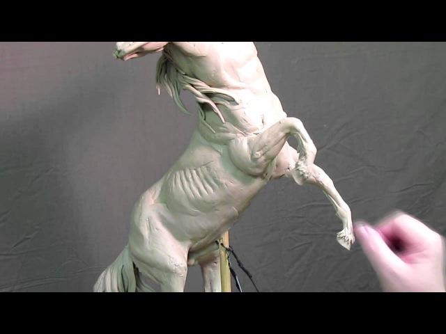 Sagittarius Commission - Hooves and Fetlocks