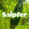 Saipfer | Интересные факты
