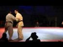 Mazovia max 2011 Final. Gabor Rozsa (HUN) - Andrius Miseckas (LT)