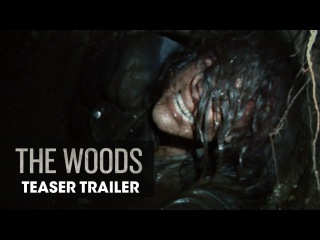 The Woods (2016 Movie) – Official Teaser Trailer