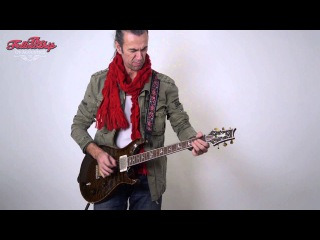 PRS Private Stock Modern Eagle Quatro | How does it sound? TFOA clip