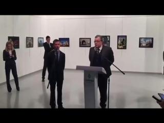Убийство российского посла в Турции Андрея Карлова.