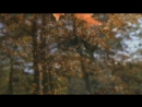 Romantic-Piano-Autumn-In-My-Heart-OST (0)