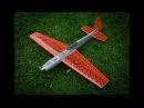 KRAGA Maripi 3D printed RC acrobat plane